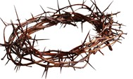 A picture of a crown of thorns